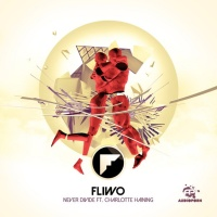 Fliwo - Never Divide