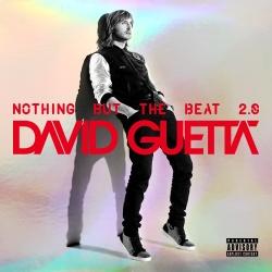 David Guetta - Night Of Your Life