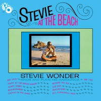 Stevie At The Beach
