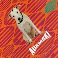 Adamski - I Dream Of You