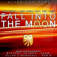 Fall Into The Moon