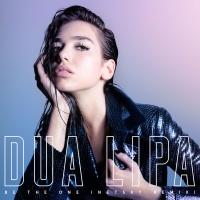 Dua Lipa - Be The One (Netsky Remix)