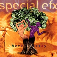 Special EFX - Since You've Been Away