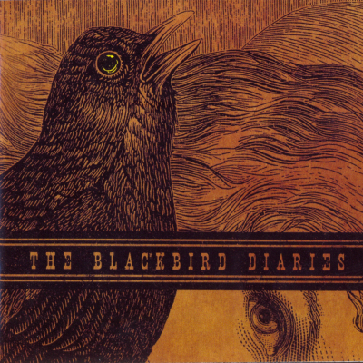 Dave Stewart - The Blackbird Diaries