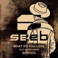 Seeb - What Do You Love (SJUR Remix)