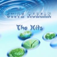 Stive Morgan - Mist In Forest
