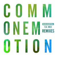 Rudimental - Common Emotion (The Golden Pony Remix)