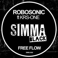 Robosonic - Free Flow