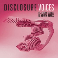 Disclosure - Voices (Le Youth Remix) [feat. Sasha Keable] - Single