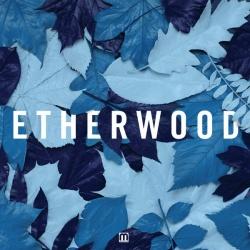 ETHERWOOD - Light My Way Home