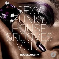 Sexy Funky House Grooves Vol.2