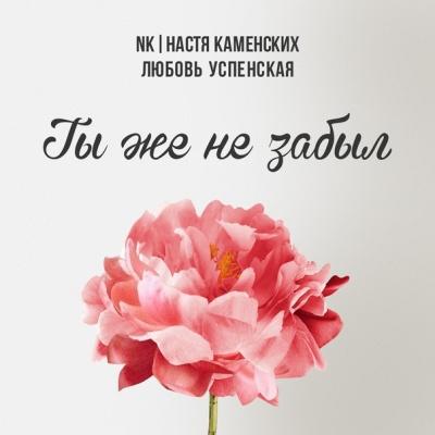 NK - Ты Же Не Забыл (Single)