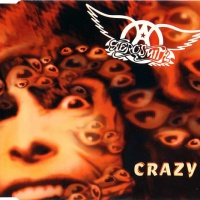 Aerosmith - Crazy (LP Version)