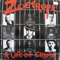 Zoetrope - Company Man