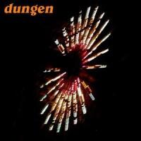 Dungen - Festival