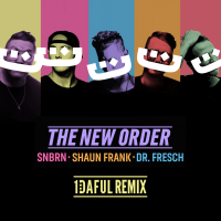 SNBRN - The New Order (1DAFUL Remix)