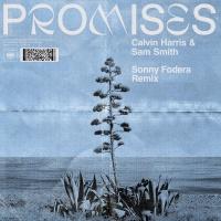 Calvin Harris - Promises (Sonny Fodera Remix)