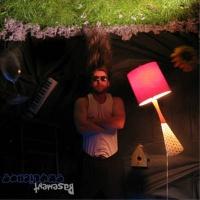 Basement Skylights - ProperRecords