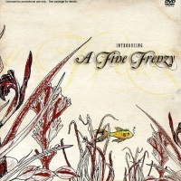 A Fine Frenzy - Introducing A Fine Frenzy