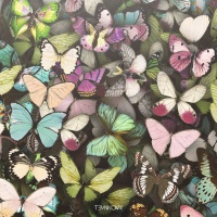 Бабочки (Radio Edit)