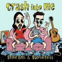 Steve Aoki feat. Darren Criss - Crash Into Me